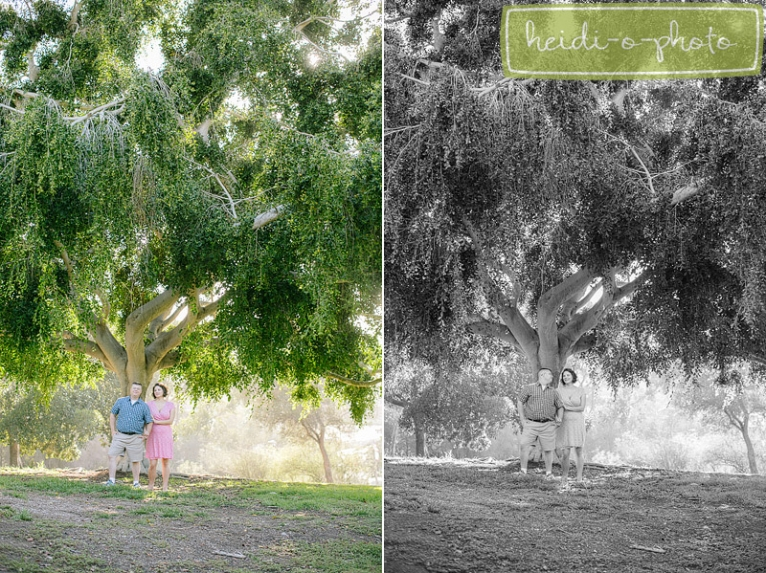 san diego california couples maternity portrait photographer presidio park