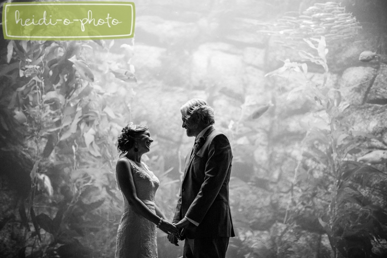 san diego scripps birch aquarium la jolla california wedding photo