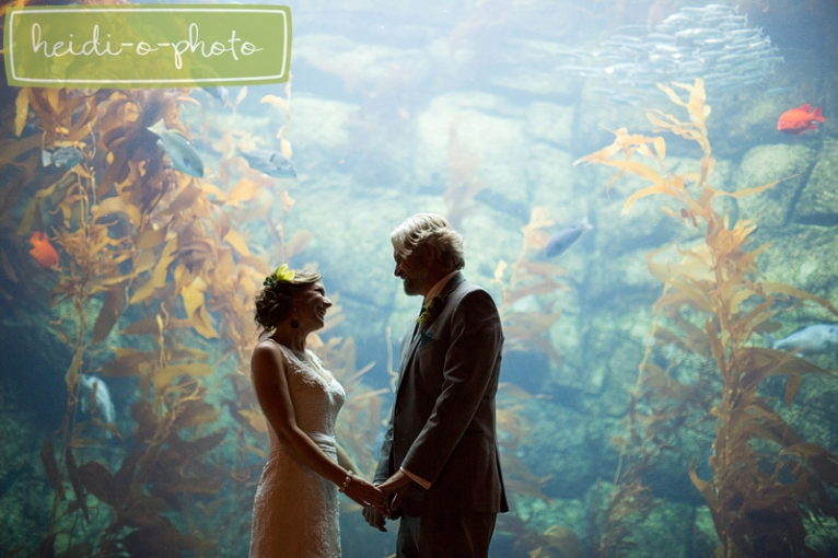 la jolla california scripps birch aquarium wedding photographer photography creative modern